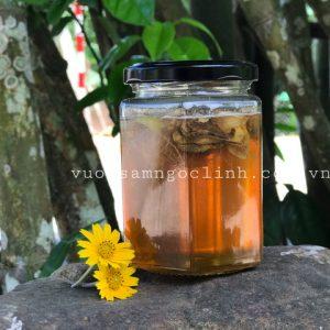 mật ngọt nam trà my